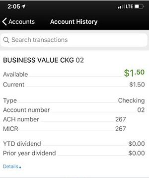 SAFE Credit Union Mobile App account details