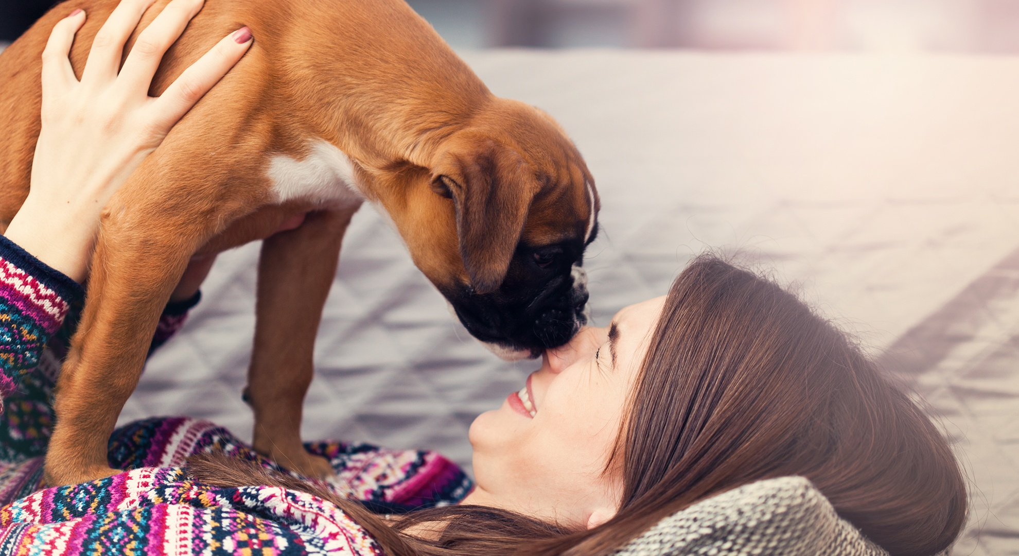 Tips to keep your new puppy safe and your home and sanity intact